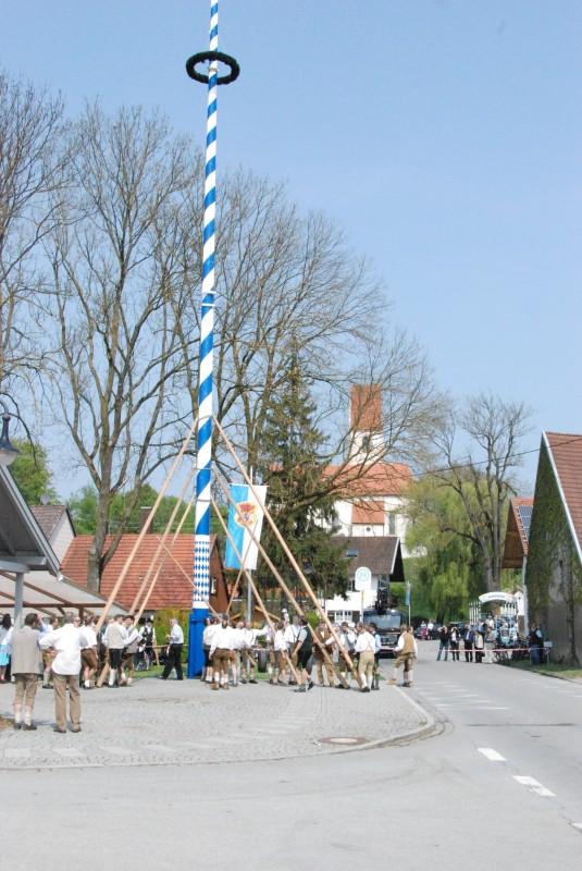 """Traditionelles Maibaumaufstellen mit """"Schwalben"""": Purfing bei München"""