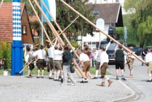 Das Aufstellen des Maibaums mit reiner Muskelkraft ist auch für g´standene Bayern anstrengend